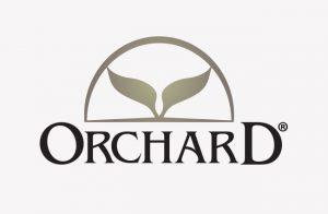 comunicación corporativa estudio de caso Orchard SinPalabras