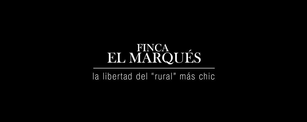 creación videos corporativos Zaragoza SinPalabras
