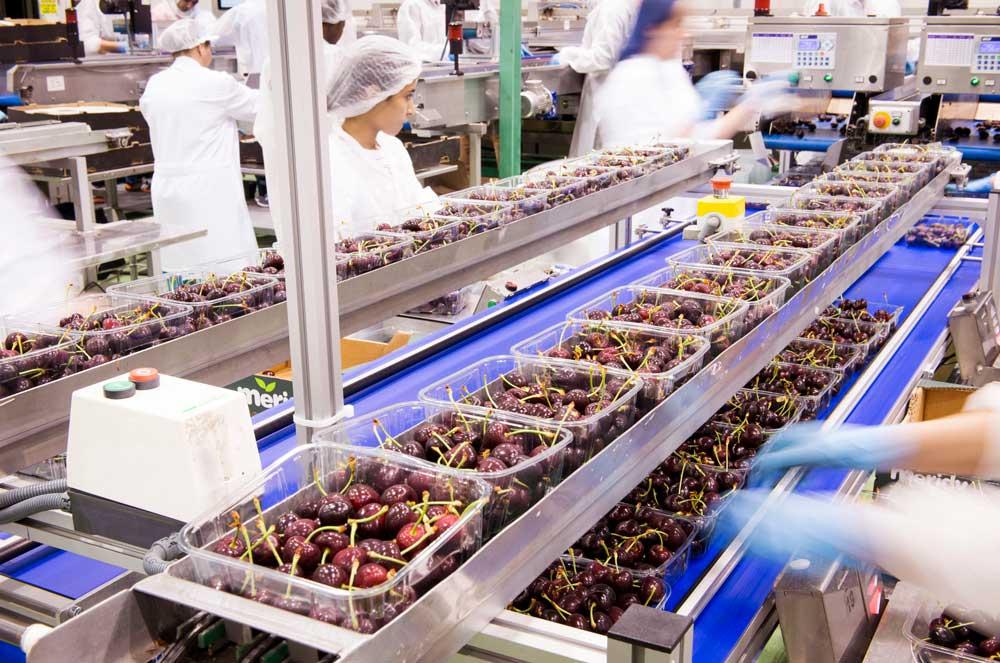fotografía de fábrica alimentaria SinPalabras